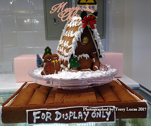 Terry-Lucas-Ginger-bread-Christmas-Photo